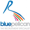 Blue Pelican Group