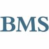 BMS Sales Performance