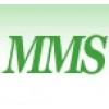 MMS PLACEMENT INTERNATIONAL INC.