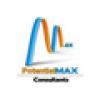 Potential Max Consultants